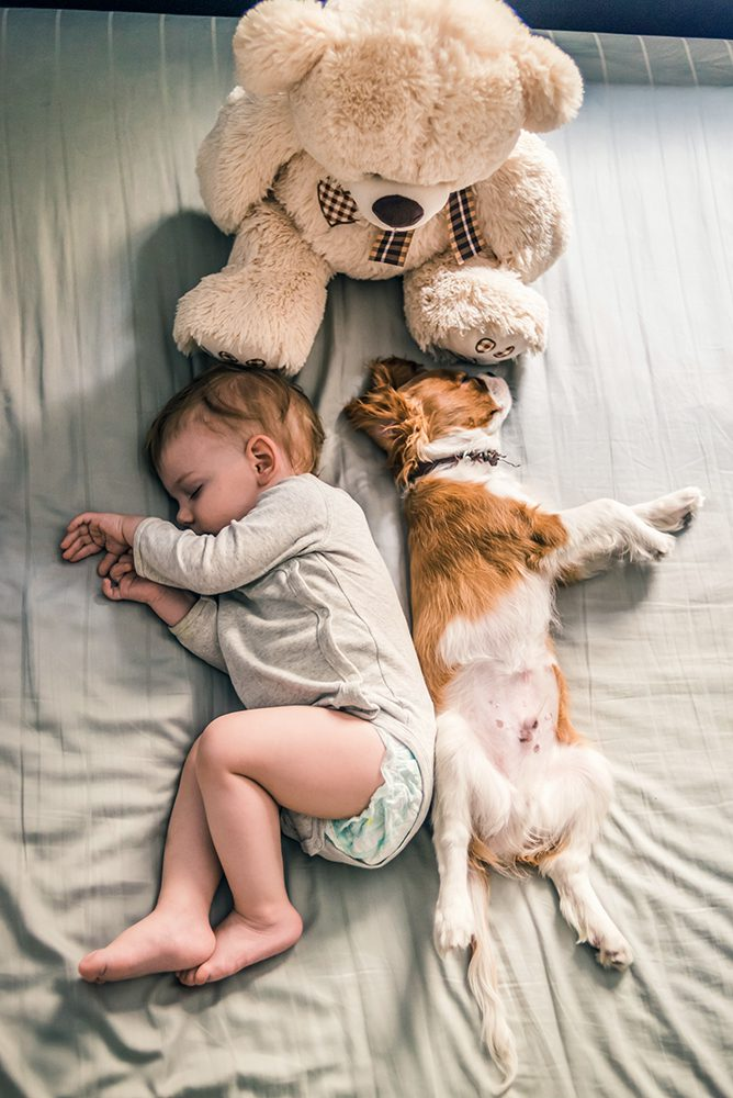 Toddler and his friend enjoying great shut eye